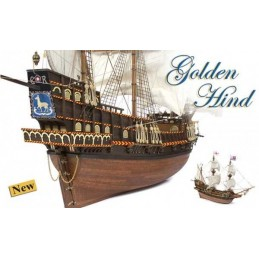 BARCO GOLDEN HIND OCRE