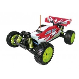 1:8 BSD ELECTRIC BUGGY
