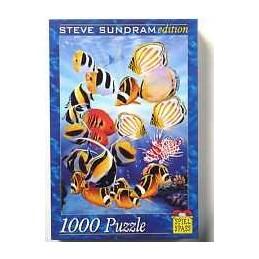 STEVE SUNDRAM - 1000PZ