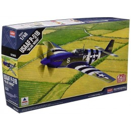 "1:48 USAAF P-51B ""BLUE NOSE"""