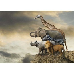 PUZZLE 500 ANIMALES AL...