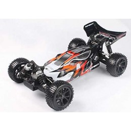 1/10 SPIRIT BUGGY BRUSHED RTR